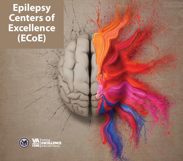 Epilepsy Centers of Excellence (ECoE) Home