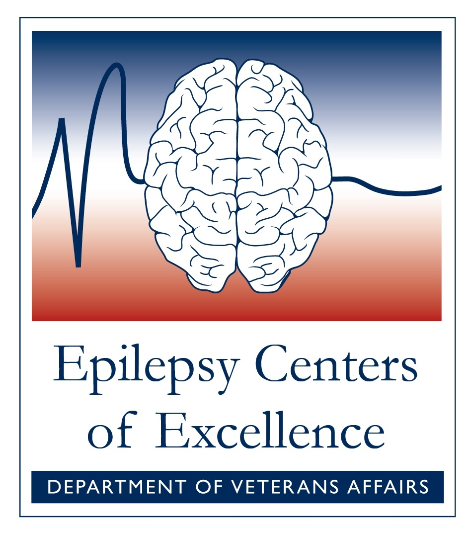 Epilepsy Centers of Excellence (ECoE)